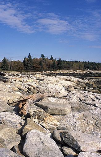 Maine Coast 2003-coast-rocks-driftwood.jpg