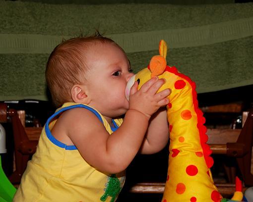 Cute Kid Thread 2008-dsc_5459-animal-lover-noah-animal-lover.jpg