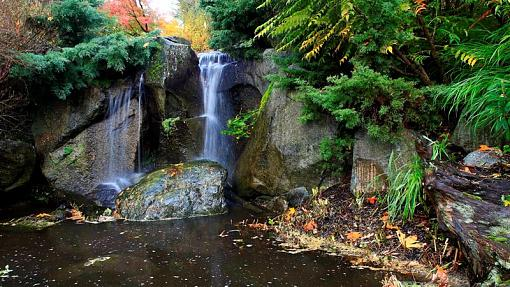 The Final Fall Shoot from Landscape to Microscape-7-medium-.jpg