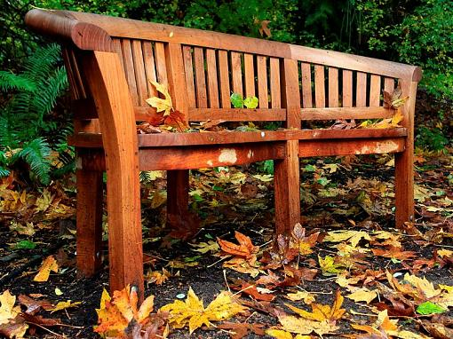 The Final Fall Shoot from Landscape to Microscape-12-medium-.jpg