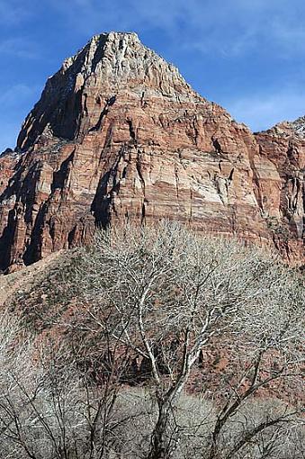Zion National Park-zion-01.jpg