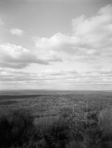 Hiking with the Holga-hh5.jpg