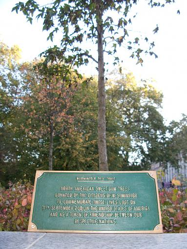 westminster tree trust-img_2524.jpg