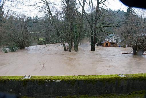 Not good in Western, WA: Flood Waters-2009-01-07_29864.jpg