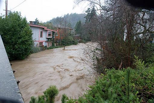 Not good in Western, WA: Flood Waters-2009-01-07_29824.jpg