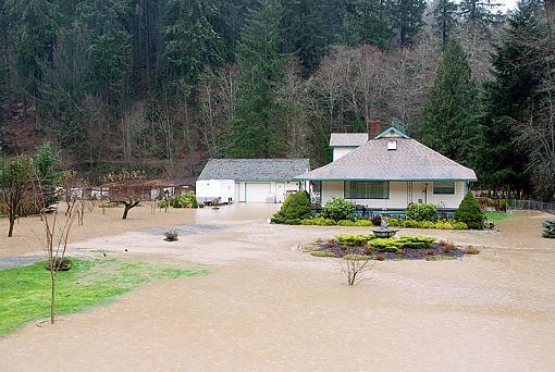 Not good in Western, WA: Flood Waters-2009-01-07_29814.jpg
