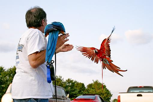 Question regarding random person/street photography-birdman_4029.jpg