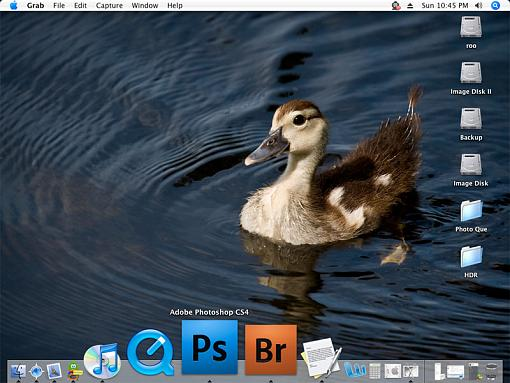 Your Desktop Photo... Why?-desktop.jpg