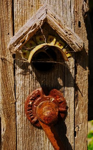 Weathered, Battered and Neglected-nobody-home-2.jpg
