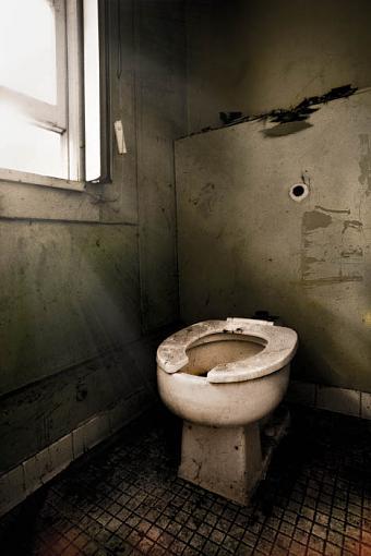 A New Window Light Thread-toilet-2.jpg