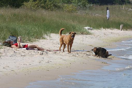 Beach Photos-20090812-img_4862.jpg