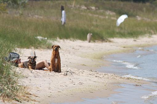 Beach Photos-20090812-img_4920.jpg