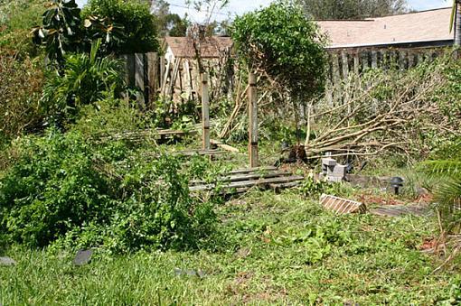 Storm Damage from Hurrinace Francis-frances11.jpg