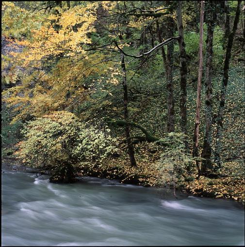 Fall Foliage Photo Gallery-1330-02.jpg