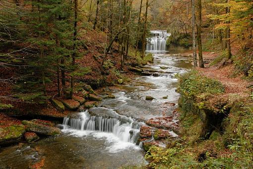 Fall Foliage Photo Gallery-4013-027.jpg
