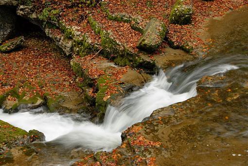 Fall Foliage Photo Gallery-4013-028.jpg