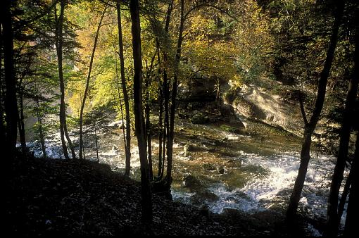 Fall Foliage Photo Gallery-s08-192.jpg
