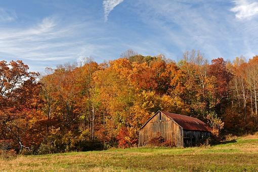 Fall Foliage Photo Gallery-dsc_5714-2-800.jpg