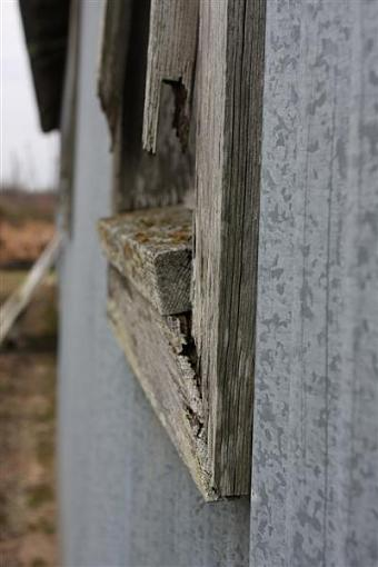 Weathered, Battered and Neglected-img_6842-medium-.jpg