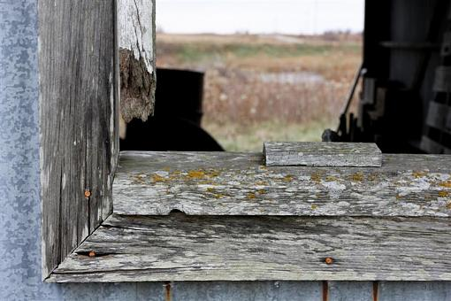 Weathered, Battered and Neglected-img_6843-medium-.jpg