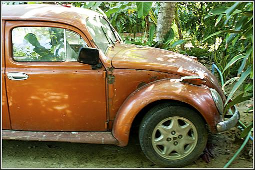 Weathered, Battered and Neglected-vw2.jpg