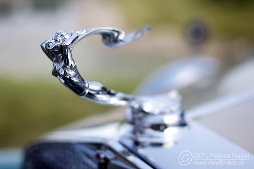 Hood ornaments-5dm21_7867.jpg