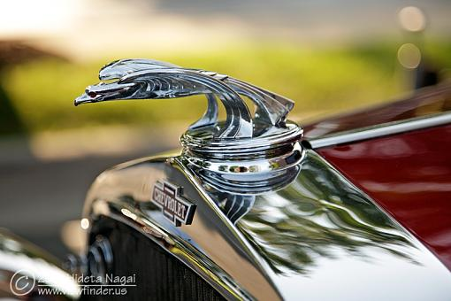 Hood ornaments-5dm21_8051.jpg