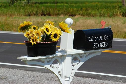 Mail box project-sunflower-mail-box.jpg