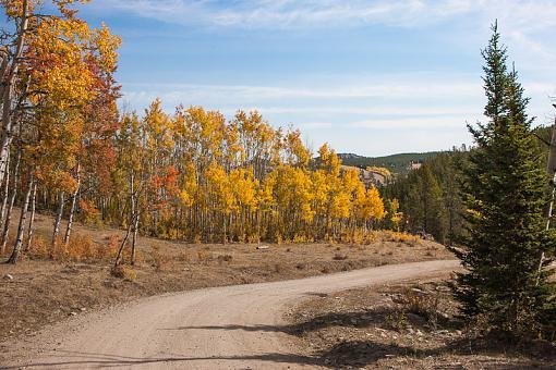 Fall colors-264v5267-8.jpg