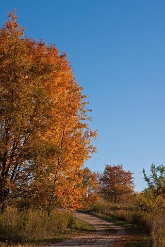 Fall colors-_mg_4245.jpg