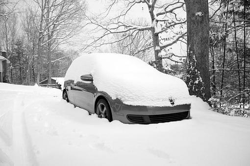 Winter Wonderland-image.jpg